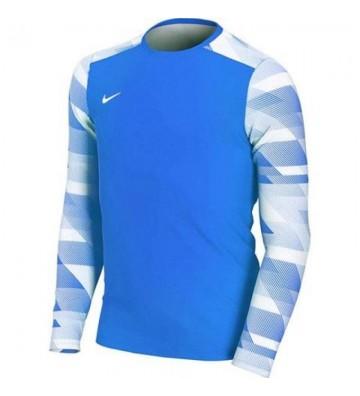 Bluza bramkarska Nike Dry Park IV JSY LS JR CJ6072-463