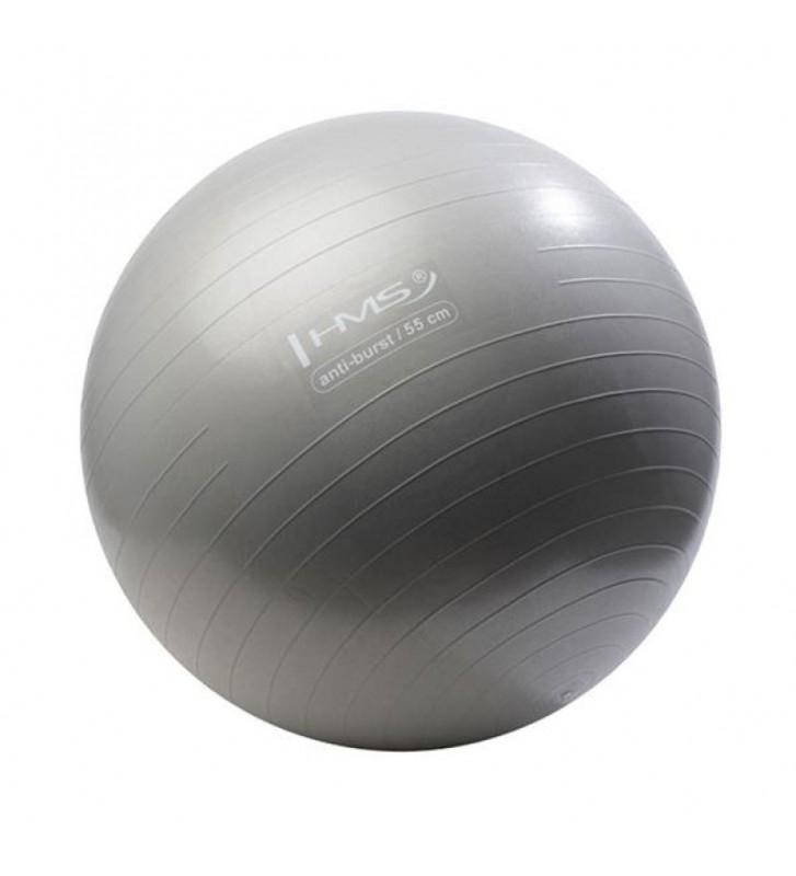 Piłka gimnastyczna Anti-Burst 55 cm srebrna
